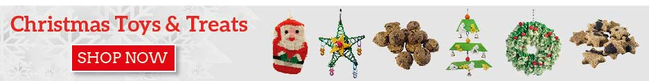 View our Christmas toys & treats