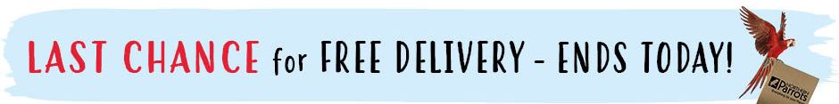 Last chance for free delivery when you spend £19