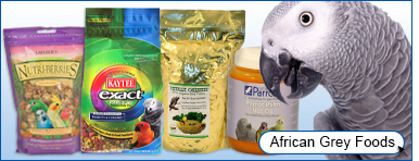 View African Grey Foods