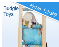 Toys for Budgies