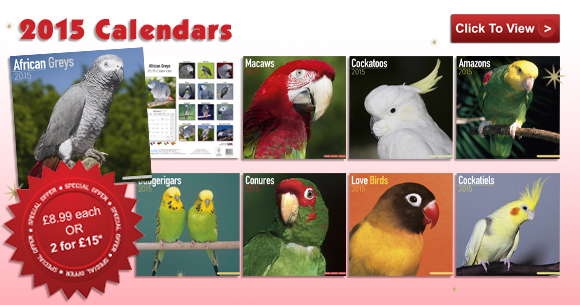 2015 Calendars - Now in stock!