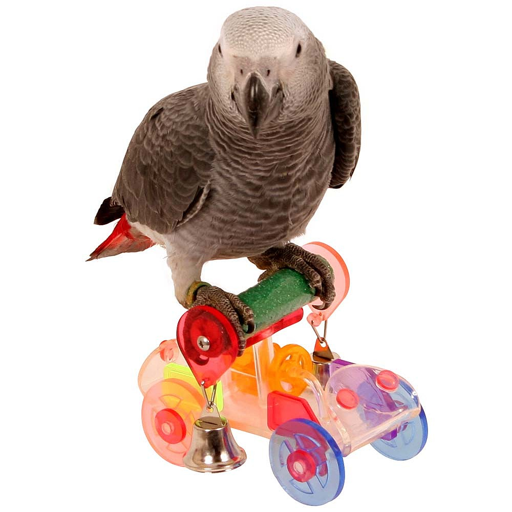 Toys For Birds : Trick time acrylic parrot toy