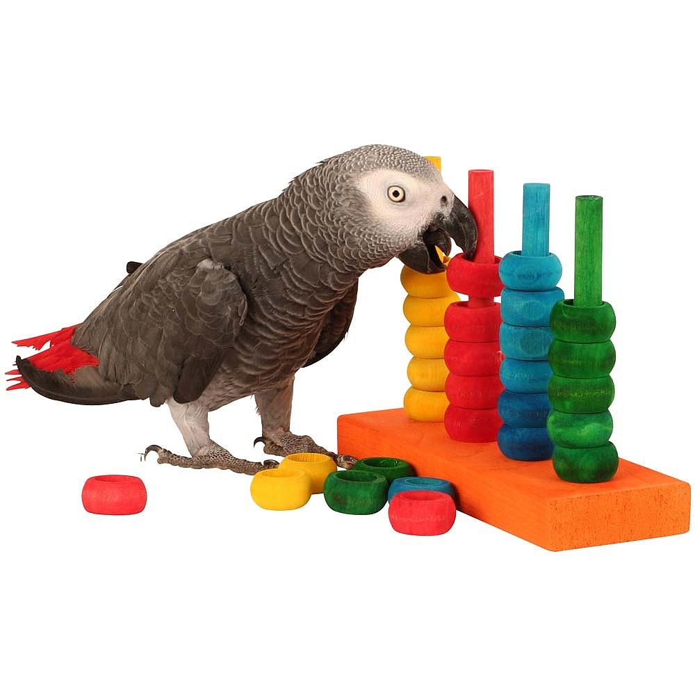 Toys For Birds : The teacher toy parrot training