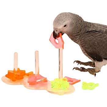 Triple Shape Stacker Acrylic Parrot Toy