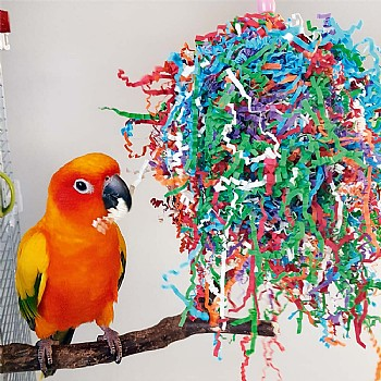 Northern Parrots Party Paper Preener Parrot Toy