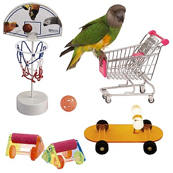 Trick & Training Parrot Toy Pack