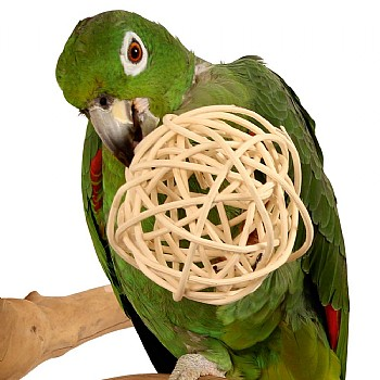 Giant Munch Ball - Woven Willow Chew Parrot Toy