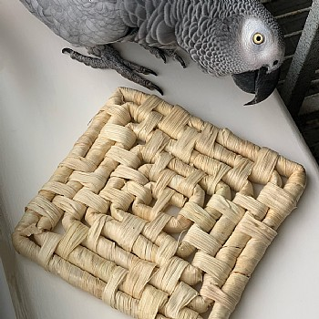 Natural Maize Mat - Chewable Toy for Parrots