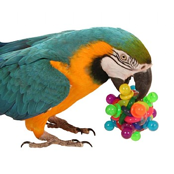 Binky Ball Foot Toy for Parrots - Large