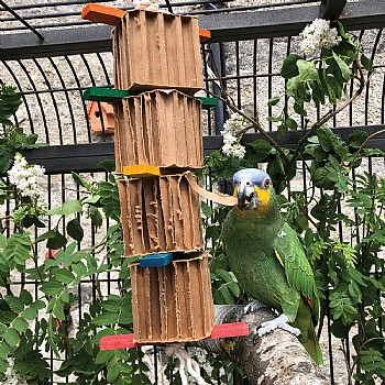 Shredding Tower Honeycomb Cardboard Parrot Toy - Large