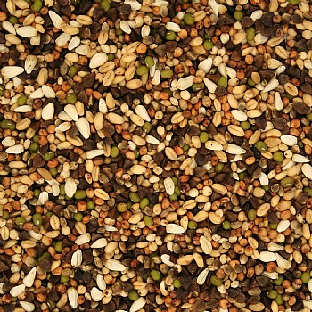 Sprouting Seeds for Parrots - 2kg