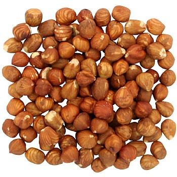 Shelled Hazel Nuts Parrot Treats - 100g