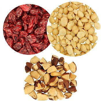 Fruit & Nut Parrot Treat Pack