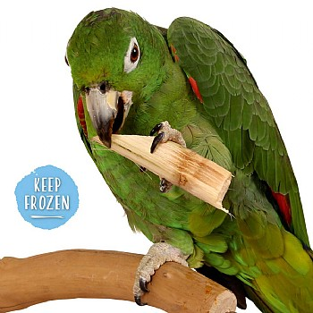 Sugar Cane - Natural & Nutritious Parrot Treat - 150g