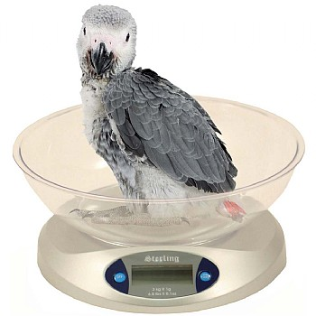 Avian Scale Kit - Highly Accurate Bird Weighing Scales