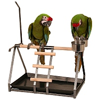 Tabletop Parrot Stand with Toy Hanger & Feeder - 3 Colours