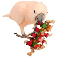 Caterpillar Foot Toy for Parrots