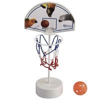 Parrot Basketball Set - Activity Parrot Toy