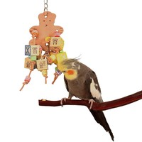Teddy Treasure Parrot Toy