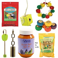 Springalicious Parrot Toy and Parrot Food Bundle