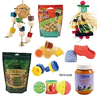 Favourites Toys & Treats Pack
