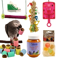 African Grey Essentials Kit Offer