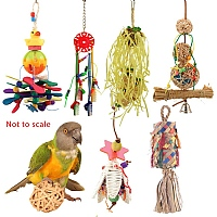 Small Parrot Toy Pack