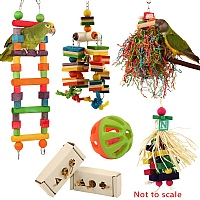 January Super Sale Parrot Toy Pack