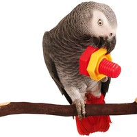 Jumbo Nuts & Bolts Parrot Puzzle Toy