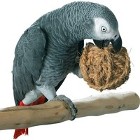 Coco Rope Ball for Parrots