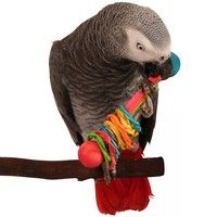 Vine Ring Rattle Foot Toy for Parrots