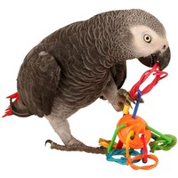 Toe Rings Foot Toy for Parrots