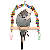 Lots `O Beads Swing for Small Pet Birds