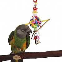 Atom of Love Parrot Toy - Small
