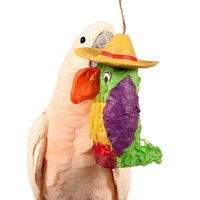 Fill-Your-Own Parrot Pinata - Chewable Foraging Parrot Toy