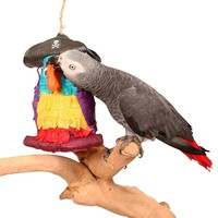 Fill-Your-Own Pinata - Pirate Parrot - Foraging Parrot Toy