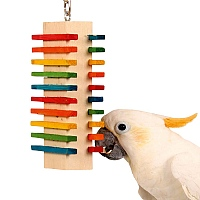 Two Side Slide Parrot Toy - Medium