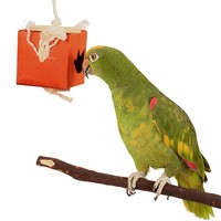 Shred & Find Chewable Foraging Toy for Parrots - Large