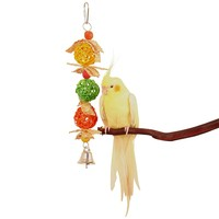 Spin & Chew - Munchable Foraging Toy for Parrots