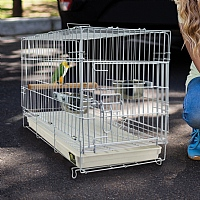 Folding Travel Cage for Small Parrots