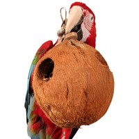 Coco Full Moon - Large Natural Chew Toy for Parrots