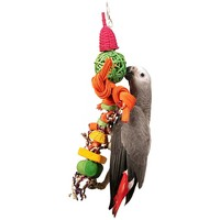 Skater Boy Natural Parrot Toy