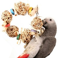 Crunch Time Foraging Ring Parrot Toy