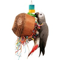 Coconut Fun Frenzy Parrot Toy
