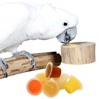 Pack of 6 Parrot Fruit Jelly Cups with Holder