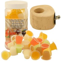 Tub of 24 Parrot Jelly Fruit Cups & Holder