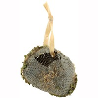 Naturals Suet Coated Sunflower Head Wild Bird Treat - 150g