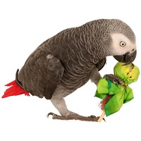 Polly Pops Foot Toys for Medium Parrots - Pack of 3