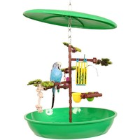 Feathered Fun Desktop Activity Centre for Small Birds