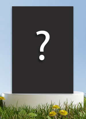 Northern Parrots Catalogue